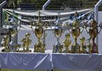 featured trofeus